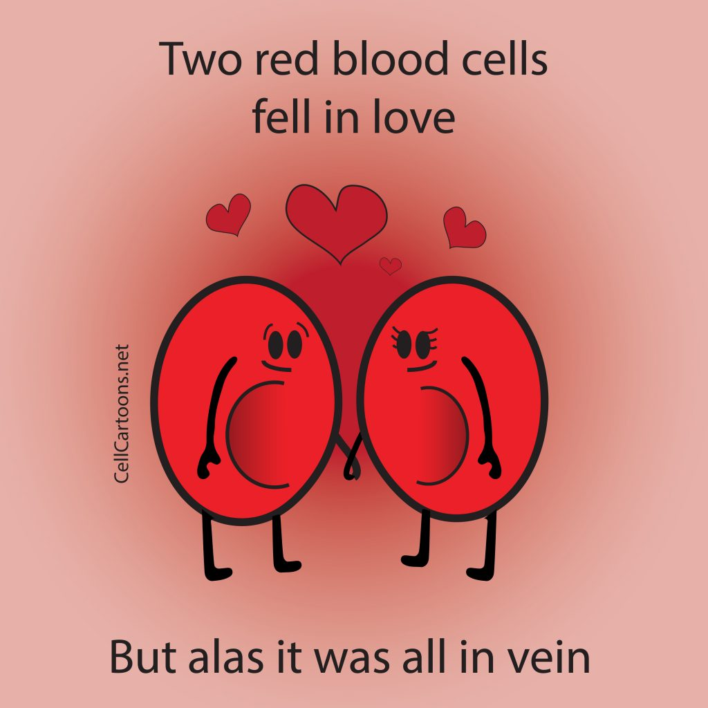 red blood cells fell in love in the vein science meme