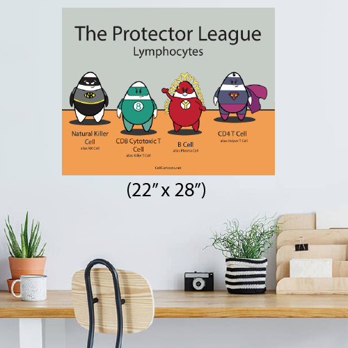 Protector League our own super heroes: natural killer (NK) cell, CD8 T cell, CD4 T cell, and B cell