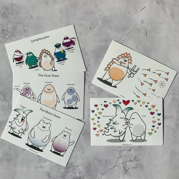lymphocytes, monocyte, dendritic cell, macrophage, granulocytes cartoon postcard