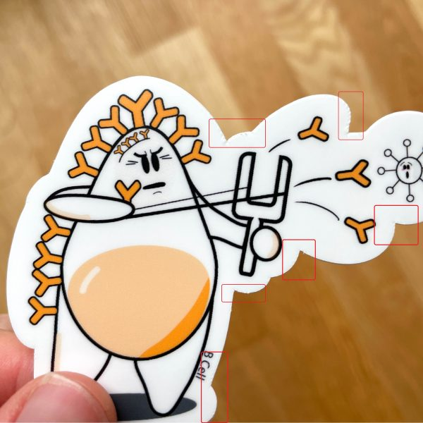 B cell shooting antibodies defective sticker